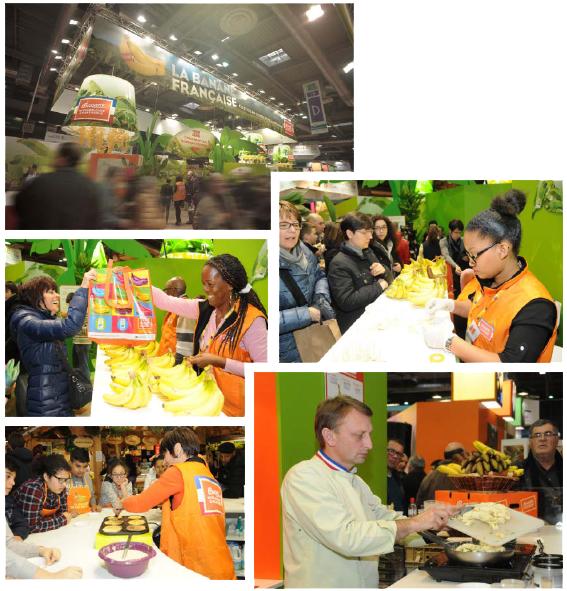 Salon de l agriculture edition 2015 banane de guadeloupe for Salon du jardin 2015 guadeloupe