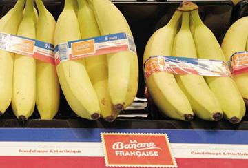 Voyage de Presse à Dunkerque – La Banane Française