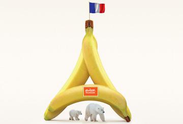 Qui produit la banane la plus vertueuse ?