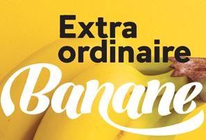 Extra Ordinaire Banane : l'exposition à Dunkerque