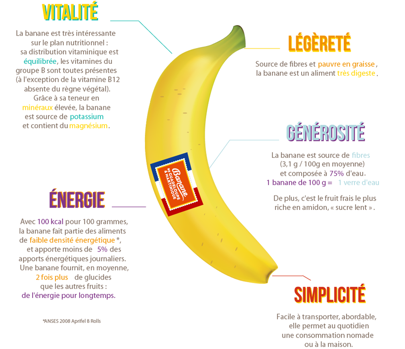 INFOGRAPHIE HEALTHY
