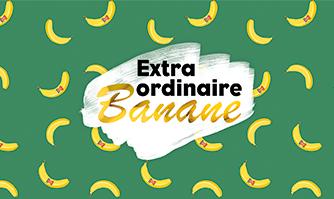 Découvrez le blog Extra ordinaire Banane !