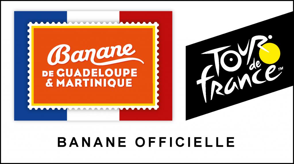 logo co branding - BGM - TDF