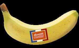 banane seule