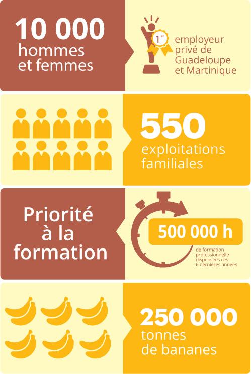 infographie site BGM V2